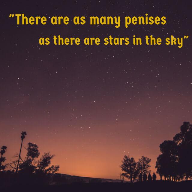 Davey Wavey Quotes - As many penises...