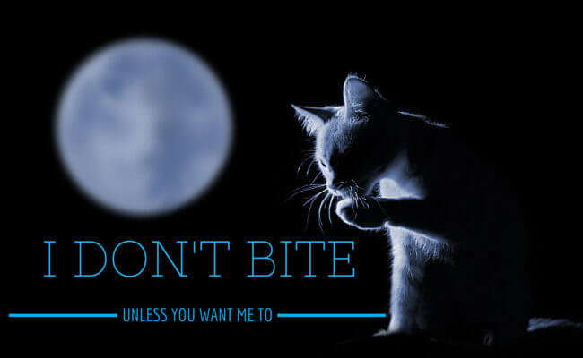 I don't Bite... Unless you ask me to