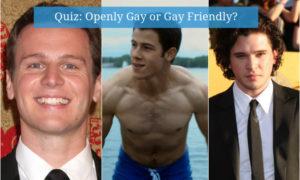 Quiz - Openly Gay or Gay Friendly