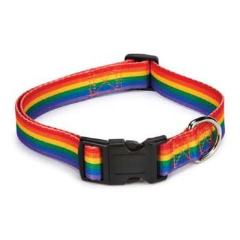 Rainbow Pet Collar
