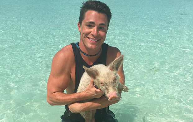 Colton Haynes Fulfills The Weirdest Lifelong Dream: Swimming With Pigs