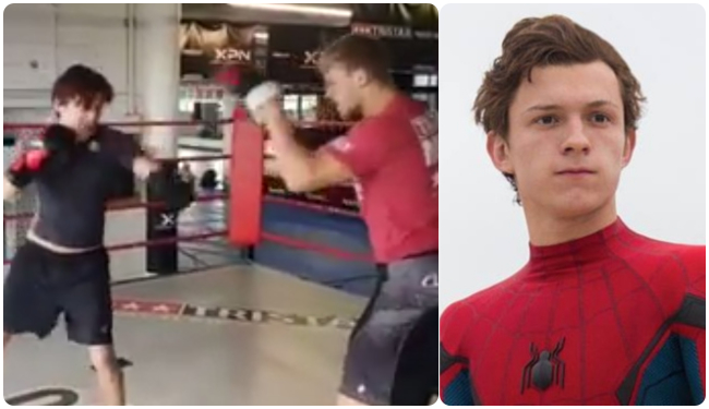 Tom Holland boxing